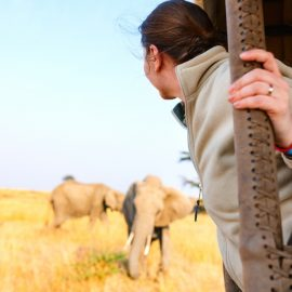 Rules and Guidelines to Get the Best Out of Your Game Drive